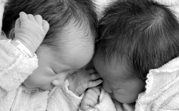twins-1024x639